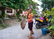 Gini with monk fish
